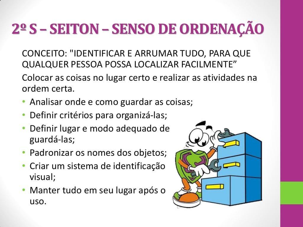 Seiton (Organização)