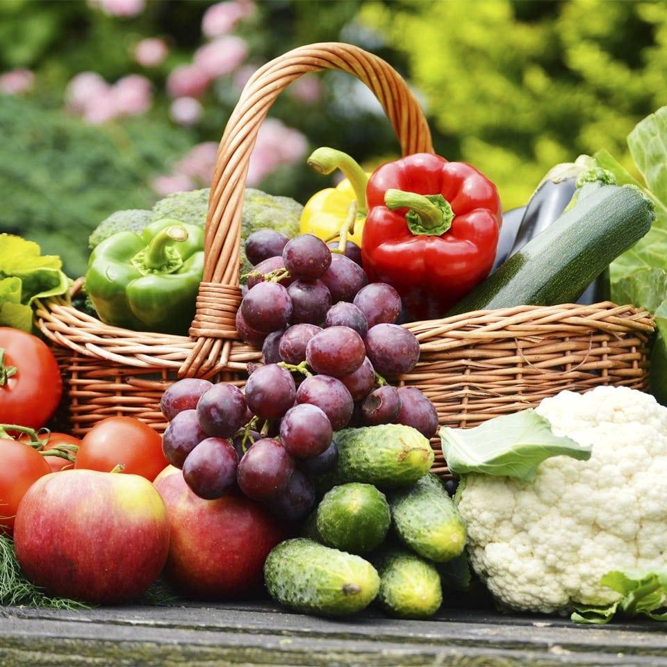 Curso de Técnicas para uma Alimentação Saudável