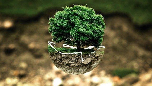 Competência em Matéria Ambiental