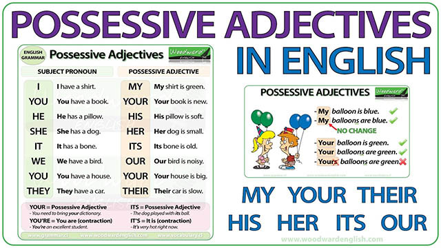 Possessive Adjective Pronouns