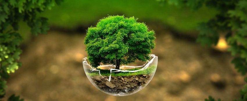 Curso de Gestão Ambiental