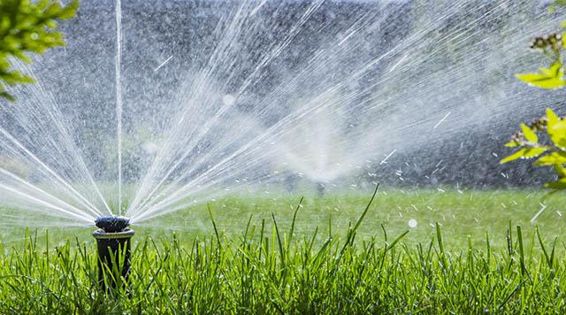 A importância de diminuir o consumo de água