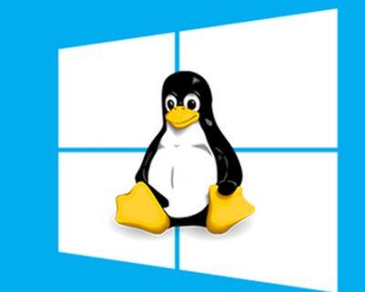 Curso de Linux básico