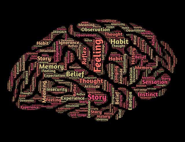 niveis neurologicos