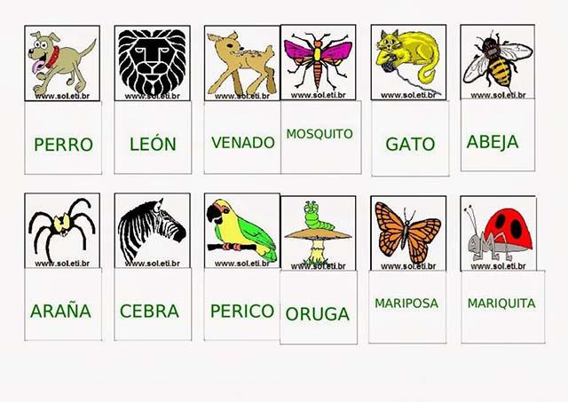 Animais-Em-Espanhol