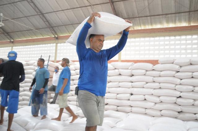 Normas de segurança do trabalho em atividades de transporte de sacas.